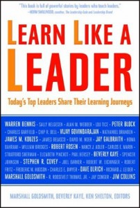 Organizational Learning, Leadership