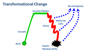 Transformational Change diagram